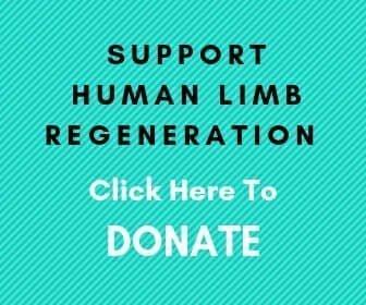 donate to limb regeneration